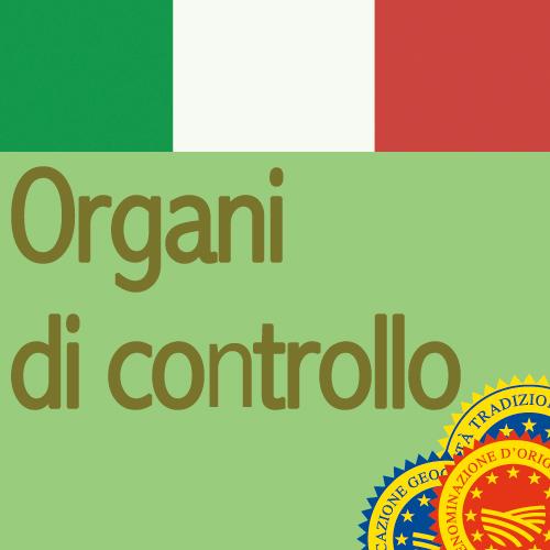 Organi-di-controllo-IT